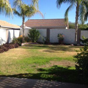 14-backyard