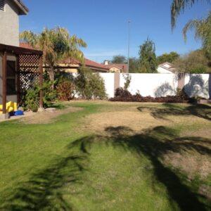 15-backyard
